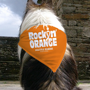 Rockin Orange Pet Bandana